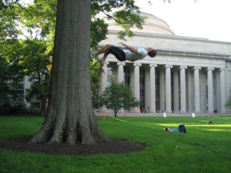 Proper use of trees at MIT